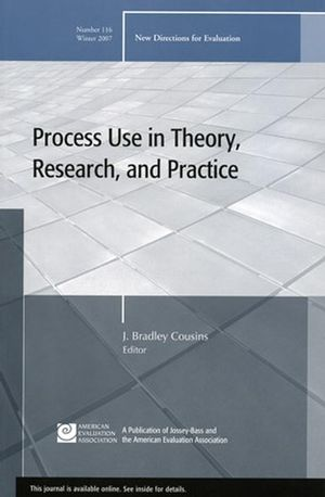 Process use in theory, research and practice